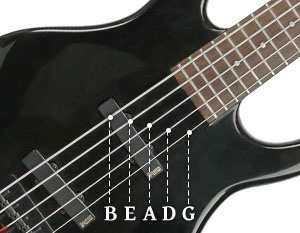 five string bass names